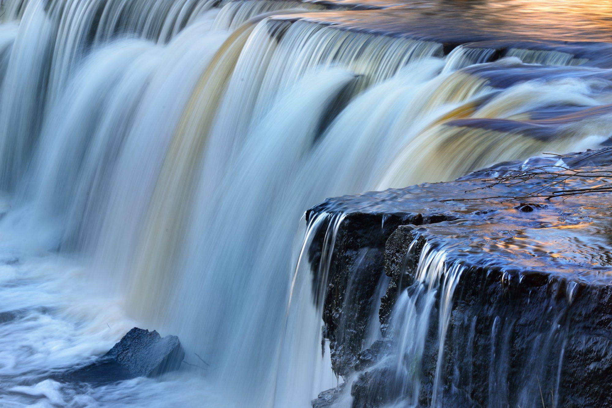 Dzika rzeka